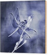 The Dragonfly  Wood Print