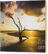 The Driftwood Tree Folly Beach Wood Print