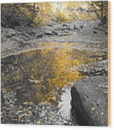 The Dry Creek Bed Wood Print