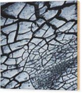 The Dry Weep  Wood Print