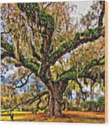 The Dueling Oak Painted Wood Print