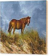 The Dune King Wood Print