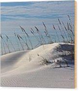 The Dunes Of Destin Wood Print