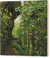 The Eagle Creek Trail Wood Print