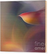 The Early Bird-abstract Art Wood Print