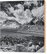 The Eastern Sierra Wood Print