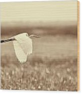 The Egret In Flight Series V1 Wood Print