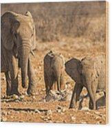 The Elephants Itching Rock Wood Print by Paul W Sharpe Aka Wizard of Wonders
