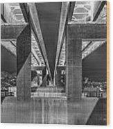 The Elevated Freeway Wood Print