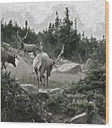 The Elk Painterly 2 Wood Print