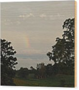 The End Of The Rainbow Wood Print
