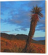 The Endangered Wild West Wood Print