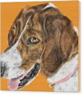 The English Pointer Foxhound Wood Print
