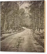 The Entrance Of The Great Forest Wood Print