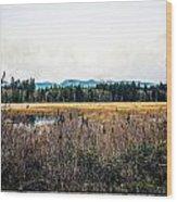 Hamilton Marsh  Wood Print