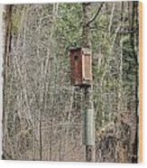 Birdhouse Environment Of Hamilton Marsh  Wood Print