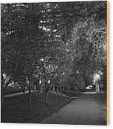 The Evening Foliage Tunnel Wood Print