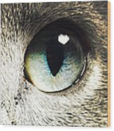 The Eye Of The Russian Blue Wood Print
