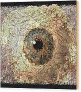 The Eyes 17 Wood Print