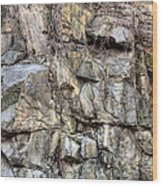 The Face In The Rock Wood Print