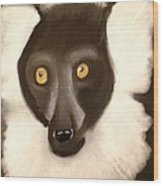 The Face Of A Lemur Wood Print