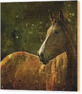 The Fairytale Horse Wood Print