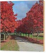 The Fall Wood Print