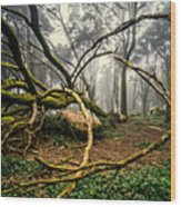 The Fallen Tree II Wood Print