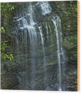 The Falls From Above Wood Print