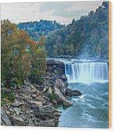 The Falls In Fall Wood Print