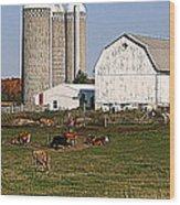 The Farm In Autumn Wood Print