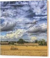 The Farm In The Summertime  Wood Print