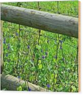 The Fence At The Meadow Wood Print