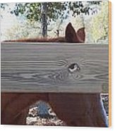 The Fence Eye Wood Print