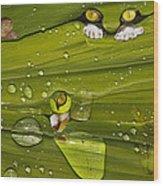 The First Rain Wood Print