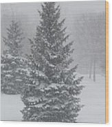 The First Snow Of Christmas Wood Print