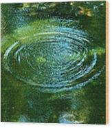 The Fish Pond Wood Print