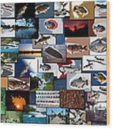 The Fishing Hole Collage Rectangle Wood Print