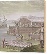 The Fishing Industry In Newfoundland Wood Print by G Bramati