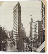 The Flatiron Building In Ny Wood Print