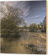 The Floods At Stoke Canon  Wood Print