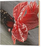 The Flower And The Butterfly Wood Print