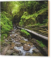The Flume With Flowing Water Wood Print