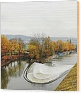 The Foggy Day Wood Print by Loreta Mickiene