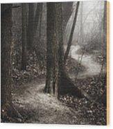 The Foggy Path Wood Print by Scott Norris