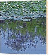 The Forest Beneath The Lilypads Wood Print