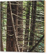 The Forest Combed By The Wind In The Lake Wood Print