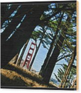 The Forest Of The Golden Gate Wood Print