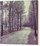 The Forest Road Retro Wood Print