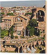 The Forum From The Palatine Wood Print